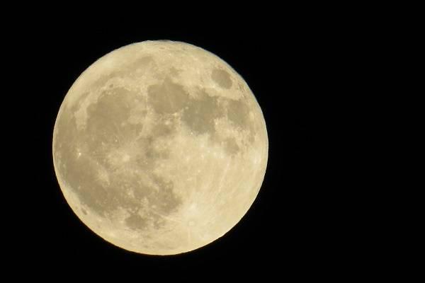 藤原道長が「望月の歌」を詠んで...