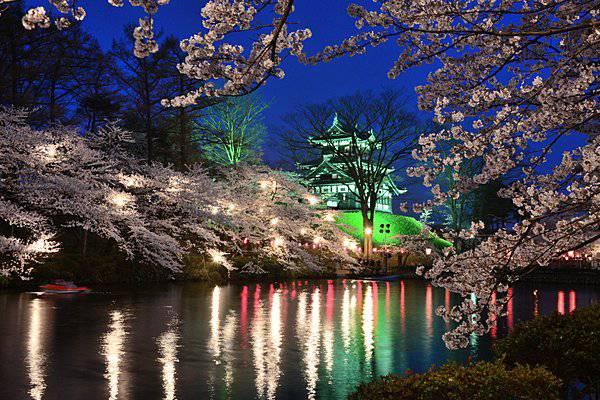特集|【甲信越の桜の名所】屋台グルメも!「日本三大桜」「日本三大夜桜」をご存じですか?